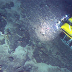 Hercules ROV shown above deep ocean floor basalt (NOAA)